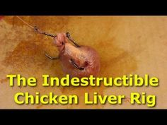 Bulletproof chicken liver rig - Stop losing bait when catfishing - This is a great way to make your chicken liver (or other catfish bait) indestructible. Catfish Rigs, Catfish Bait, Catfish Fishing, Trout Fishing Tips, Fishing Rigs, Fishing Videos, Crappie Fishing, Fishing Bait, Gone Fishing