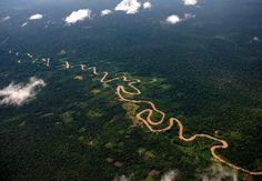 B&P_desde_Guayana: Shanay-timpishka, el río hirviente del Amazonas.
