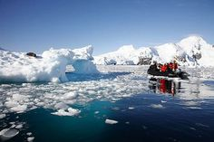 Antarctica: Zodiac Cruising - Natural World Safaris