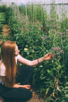 A Visit to Gaia Herb Farm | #gaiaherbs #connectingplantsandpeople