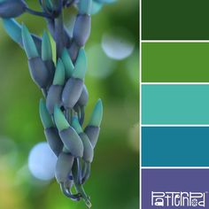 Inspired Trends & Color - Color Palettes Inspired by Nature - PatternPod.com                                                                                                                                                                                 Más