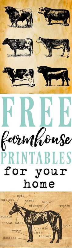 Beautiful Printables | Printable decor | beautiful printable decor ideas | farmhouse prints