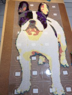 French bulldog hama beads by KevinC