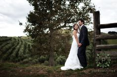 A collection of our favourite Auckland weddings, plus international wedding photography, and Auckland wedding videography. Photography Ideas, Wedding Photography, Videography, Wedding Photos, Romantic, Weddings, Wedding Dresses, Marriage Pictures, Bride Dresses