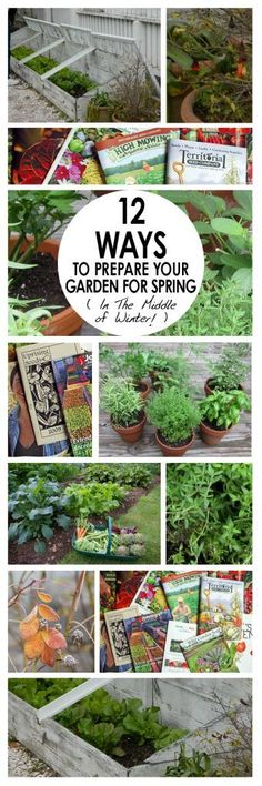 12-ways-to-prepare-your-garden-for-spring-in-the-middle-of-winter