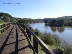 Extremadura con peques - Blog de excursiones: FLUVIARIO DE MORA, EN EL PARQUE ECOLÓGICO DE GAMEIRO