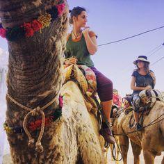 Unsere Kamelsafari durch die Thar-Wüste. Ein Erfahrungsbericht.