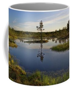 #estonia #bog #earlymorning #marsh #mug #giftidea Unique Gifts For Men, Gifts For Girls, Photography Awards, Fine Art Photography, Julia Margaret Cameron, Camera Art, Mugs For Sale, Pin Pin, Travel Photographer