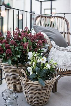 Cute flower arrangements for the balcony | Cashback World | Buy balcony supplies now: https://www.cashbackworld.com/branche/diy-garden