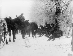 Men of the Newfoundland Regiment with a horse-drawn wagon resting by the roadside in the snow, near Hesdin, 20 December 1917.