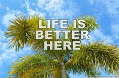 When do you plan on visiting us? #StPeteBeach #LoveFL #LiveAmplified #CelebratetheExperience #Florida