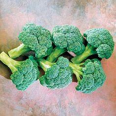 Coronado Crown Hybrid Broccoli