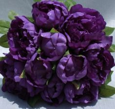 Purple peonies?!?! Who knew?!?!? My second favourite flower.
