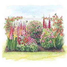 Hummingbird Garden Design