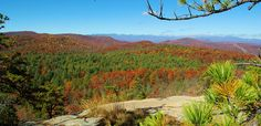 DuPont State Forest: Cedar Rock Mountain