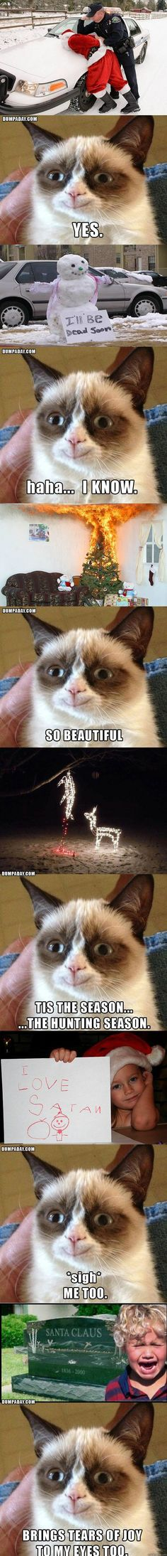 grumpy cat ROTFL- i'm about to pee myself.. what makes grumpy happy at christmas...