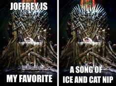Joffrey is Grumpy Cat's favorite character #GameofThrones