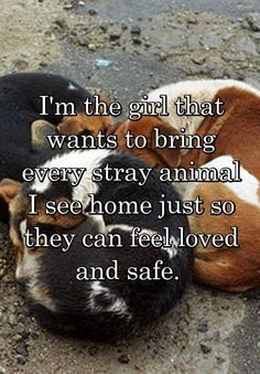 the girl that wants to bring every stray animal I see home just so they can feel loved and safe.I'm the girl that wants to bring every stray animal I see home just so they can feel loved and safe. Animals And Pets, Funny Animals, Cute Animals, Zoo Animals, Animal Quotes, Dog Quotes, Animal Cruelty Quotes, I Love Dogs, Puppy Love