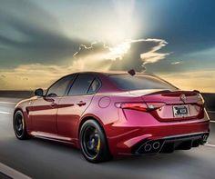 Alfa Romeo Giulia Coupe, Alfa Giulia, Alfa Cars, Alfa Romeo Cars, Alfa Gta, Import Motors, New Luxury Cars, Carros Premium, New Trucks