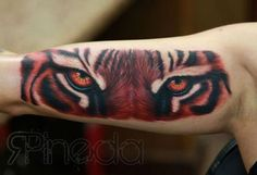 Tiger Eyes 3D Tattoo On Half Sleeve