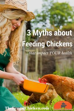 You need to pay attention to what your chickens eat. These feeding mistakes are easy to avoid, but ignore them, and they can easily prevent you from living a healthier life. Raising Backyard Chickens, Backyard Poultry, Keeping Chickens, Pet Chickens, Urban Chickens, Rabbits, Chicken Eating, Chicken Feed, Chicken Coops