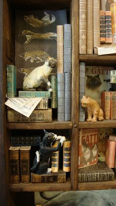 "Miniature Library miniature thematic  "" invasion of cats"""