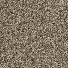 """Carpeting in style """"French Meadows Accent"""" color Drift Scape-great tweed fleck multi toned texture.. -Flooring by Shaw"""