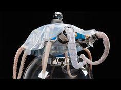 Biomimétisme : regardez cet impressionnant robot poulpe se déplacer sous l'eau