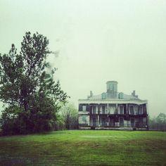 One of many grand plantation houses abandoned