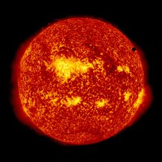 The Rare Delight - This image shows the Solar Dynamic Observatory's ultra-high definition view of the 2012 Venus Transit taken in the 304 angstrom wavelength of light. NASA image captured June 6, 2012.