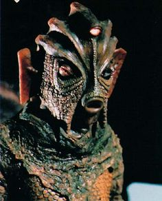 Google Image Result for http://images3.wikia.nocookie.net/__cb20121006142933/non-aliencreatures/images/b/be/Silurian1.jpg