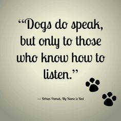 Yes they do, I have 3 little fur babies that talk to me all the time. Any animal owner & lover of animals know this. ~Kelli~