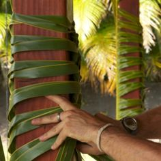 dress up lanai columns for a tropical feeling for a tropical party, Havana nights, luau etc