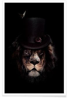 Dark Lion Close-up poster bestellen - PosterJunkie Lion Poster, Poster Art, Canvas Wall Art, Wall Art Prints, Canvas Prints, Canvas Paper, Vogel Tattoo, Foto Poster, Lion Pictures