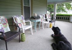 Bucky smells the rain while waiting for his company on the front porch.  Front porch.  Throws from Overstock.com https://www.overstock.com/Bedding-Bath/Greenland-Home-Fashions-Blooming-Prairie-Throw/4388282/product.html/   Table from Hobby Lobby.  Lanterns from Walmart. https://www.walmart.com/ip/Decmode-Ceramic-Lantern-Multi-Color/54736480