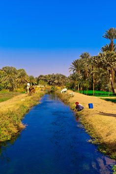 A Nubian Village near Aswan, Egypt