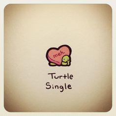 Turtle Single