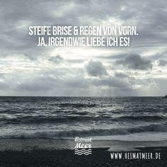 Steife Brise, Schietwetter - Wir lieben es! >>