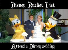 Disney bucket list: Attend a disney wedding.  If you're lucky enough to be invited to one, it will be a truly magical experience!