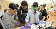 NY Times Learning Student Citizen Scientists