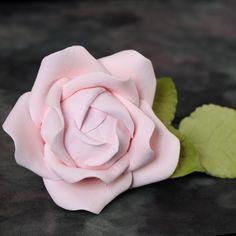 Medium Cabbage Roses & Leaves - Pink   CaljavaOnline
