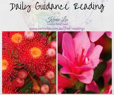 Spiritual guidance reading for Friday 12 August 2016. Choose the image you are drawn to the most then visit the website to read your message. ♡