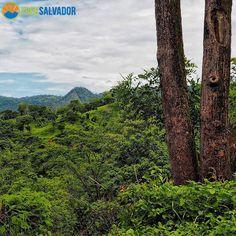 #cerros en El Salvador....#instatravel #landscape_captures #landscape #landscapelovers #mountain #mountains #montaña #montañas  #landscapephotography  #elsalvador #treksalvador #salvadorean #instasalvador #elsalvadorian  #elsalvadortravel  #elsalvadorgram #elsalvadorimpressive #sivargram #sivarpro #sivarimpresionante #instatravel #sivar #morazan #landscapelover