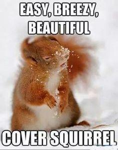 #beautyhumor