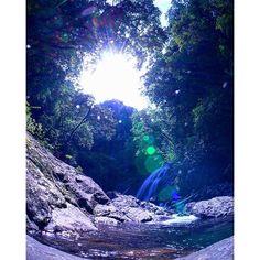 【ma.db4c_02】さんのInstagramをピンしています。 《魚眼にて鴛の滝周辺の全景🎵 かなり離れた場所だったんですが、スローシャッター中に飛沫が飛んできてました🙆 。 #waterfall #canyon #forest #scenery #landscape #nature #α6000 #slowshutter #long_exposure_pics #longexposure_japan #longexposure_shots #superphoto_longexpo #kagoshima #tokyocameraclub  #滝 #滝ジャパン2016 #滝好き #滝オタ #渓谷 #森 #風景 #自然 #ピカギュピーン #スローシャッター #長時間露光 #鹿児島 #鹿屋 #東京カメラ部 #写真撮ってる人と繋がりたい #写真好きな人と繋がりたい》