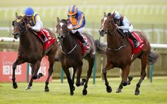 FORTUNE FAVOURS THE BRAVE  Saturday's renewal of the G1 Connolly's Red Mills Cheveley Park S. at Newmarket has to go down in the race's illustrious history as one of the great ones thanks largely to …