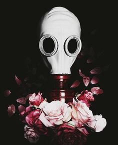 Sorry if that question I asked last scared you a bit like a hazmat in a gas mask.....Lane Boy by tøp