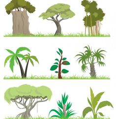 9 Jungle Trees & Grasses Vector Set - http://www.dawnbrushes.com/9-jungle-trees-grasses-vector-set/