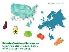 Estados Unidos y Europa son los principales mercados para los orgánicos mexicanos. SAGARPA SAGARPAMX #SOMOSPRODUCTORES