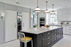 Oak Park Kitchen & Powder Room - Traditional - Kitchen - Chicago - TZS Design